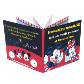 Marturie Gemeni Carticica Mickey-Minnie 1