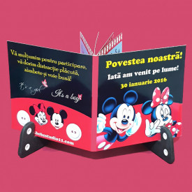 Marturie Gemeni Carticica Mickey-Minnie 1