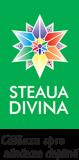 Steaua divina - produse naturale