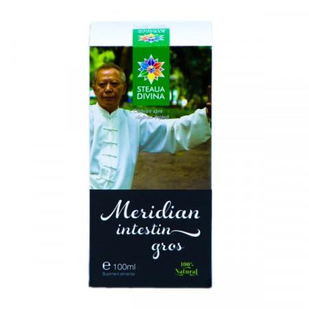 STEAUA DIVINA MERIDIAN INTESTIN GROS TINCTURA 100ML