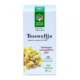 STEAUA DIVINA BOSWELLIA 60CPS