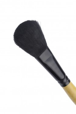Blush Brush images