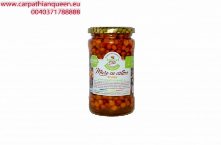 Honey with seabuckthorn BEANS 440 gr images
