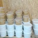 Pure Tilia Honey in Pails of 5 litters (7 kg)