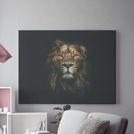 Sober lion