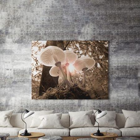 Tablou Canvas Ciuperci in lumina