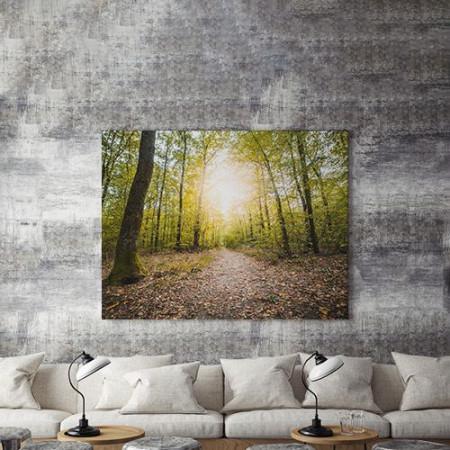 Tablou Canvas Carare prin Padure