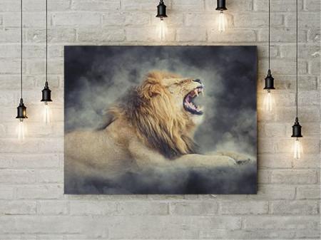 Raging Lion