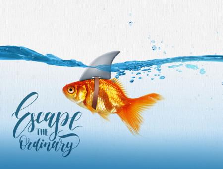 Tablou motivational - Escape the ordinary