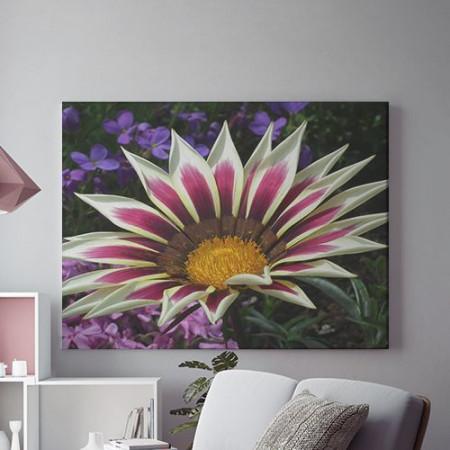 Tablou Canvas Dual color
