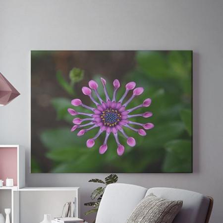 Tablou Canvas Purple star
