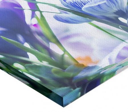 Tablou canvas - Branduse