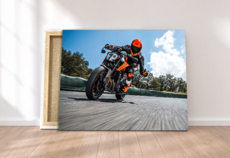 Tablou canvas - Speed