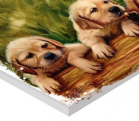 Tablou canvas efect pictura - Catelusi