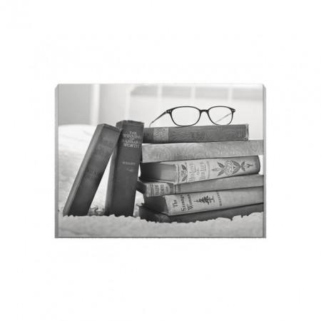 Tablou Canvas Books in Black and White