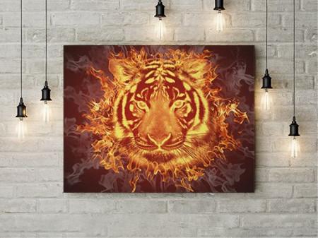 Zeul tigru