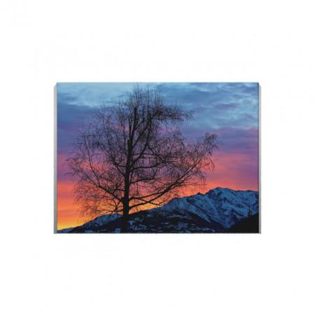 Tablou Canvas Copac Singuratic La Asfintit