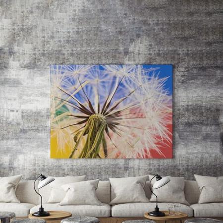 Tablou Canvas Dandelion Close-Up