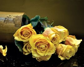 Tablou canvas - Trandafiri galbeni 01