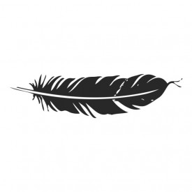 Floating Feather