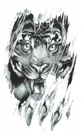 Tatuaj temporar -Tigru- 17x10cm