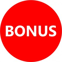 Etichete personalizate cu BONUS, 100 buc, PVC, rezistente la apa