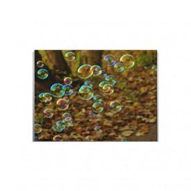 Tablou Canvas Baloane de sapun