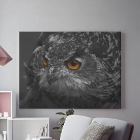 Tablou Canvas Black Owl