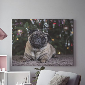 Tablou Canvas Curious puppy