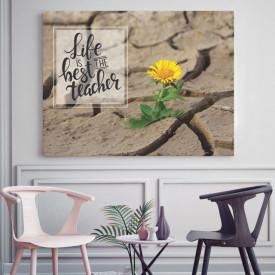 Tablou motivational - Life is the best teacher