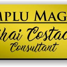 Ecuson personalizat gravat cu nume si/sau logo 8x2cm, auriu