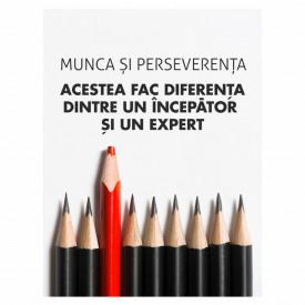Tablou motivational - Diferenta dintre incepator si expert