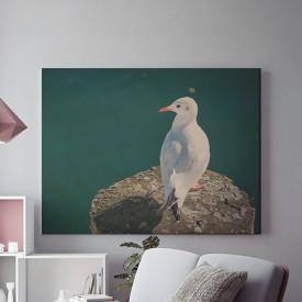 Tablou Canvas Pescarus singuratic