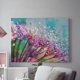 Tablou Canvas Picaturi de roua