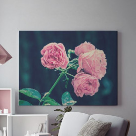 Tablou Canvas Trandafiri roz