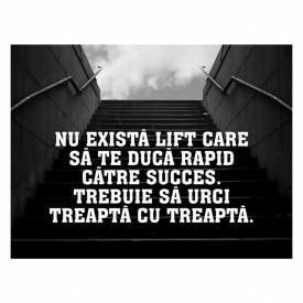 Tablou motivational - Nu exista lift spre succes