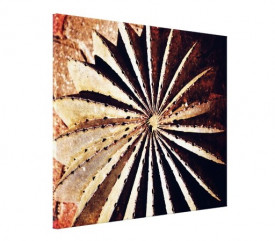 Tablou canvas - Floare abstract