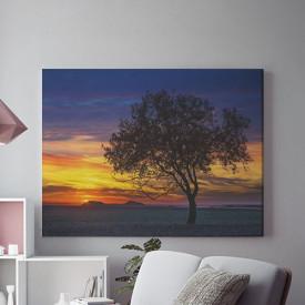 Tablou Canvas Savana