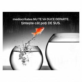 Tablou motivational - Mediocritatea nu te va duce departe
