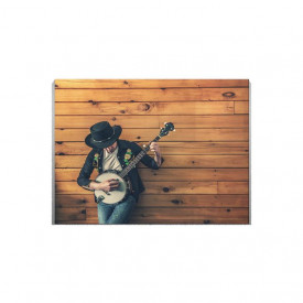 Tablou Canvas banjo