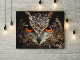 Tablou Canvas Wise owl