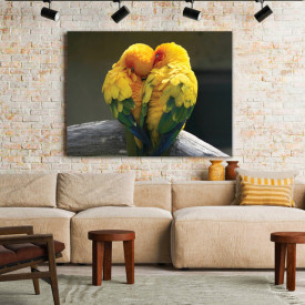 Tablou Birds in love