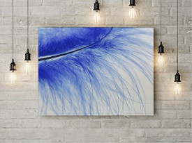 Tablou Canvas Blue Feather