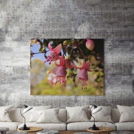 Tablou Canvas Clopotei roz