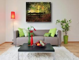 Tablou canvas - Padurea toamna