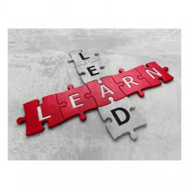 Tablou motivational - Lead, learn