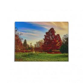 Tablou Canvas Peisaj Copaci si Campie