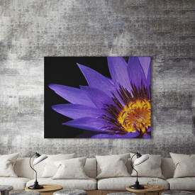 Tablou Canvas Purple flower