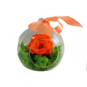 Trandafir criogenat pe pat de licheni naturali stabilizati de culoare verde.