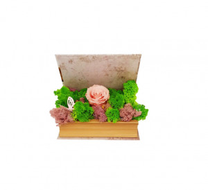Aranjament tip carte trandafir criogenat Roz pe pat de licheni